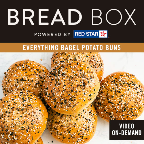 Bread Box by Red Star - Everything Bagel Potato Buns